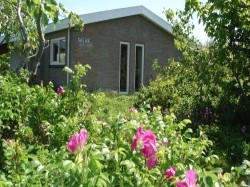 Vergrote afbeelding van Bungalow, vakantiehuis Salak in Buren(Ameland)