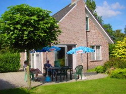 Vergrote afbeelding van Bungalow, vakantiehuis Vakantiepark Sallandshoeve in Nieuw Heeten