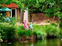 Vergrote afbeelding van Bungalow, vakantiehuis Landal Het Vennenbos  in Hapert