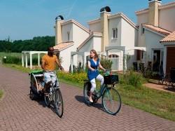 Vergrote afbeelding van Bungalow, vakantiehuis Landal Dunimar in Noordwijkerhout