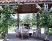 Voorbeeld afbeelding van Bed and Breakfast B&B Frankrijk-Noord  in Westkapelle