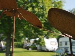 Vergrote afbeelding van Kamperen Camping Noordlaren in Noordlaren