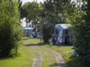 Voorbeeld afbeelding van Kamperen Camping De Nollen in Callantsoog