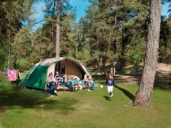 Vergrote afbeelding van Kamperen Landal Camping Coldenhove in Eerbeek