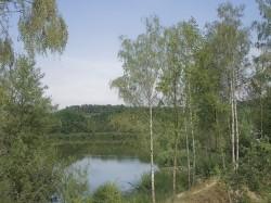 Vergrote afbeelding van Kamperen DroomPark Maasduinen in Belfeld