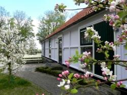 Vergrote afbeelding van Groepsaccommodatie De Strandhoeve in Baarlo (Ov)