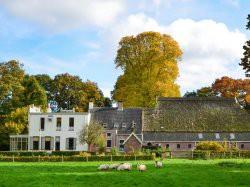 Vergrote afbeelding van Hotel Hotel De Jufferen Lunsingh in Westervelde