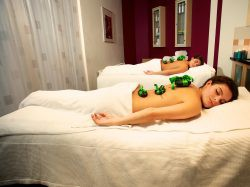 Eerste extra afbeelding van Hotel Hotel & Spa Paping in Ommen