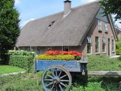 Vergrote afbeelding van Groepsaccommodatie Camping De Klimberg De Boerderij in Rheezerveen