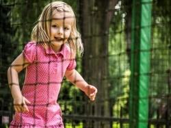 Eerste extra afbeelding van Bungalow, vakantiehuis Bungalowpark Drouwenerzand in Drouwen
