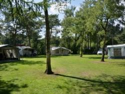 Vergrote afbeelding van Kamperen Camping de Rimboe in Lunteren