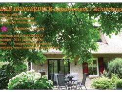 Vergrote afbeelding van Bungalow, vakantiehuis BedandBreakfast Hongerdyck in Bruchterveld