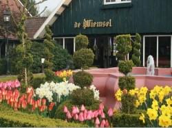 Vergrote afbeelding van Hotel Parkhotel de Wiemsel in Ootmarsum