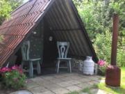Voorbeeld afbeelding van Bijzonder overnachten De Peelhut op Natuurkampeerterrein De Biezen  in Aarle-Rixtel