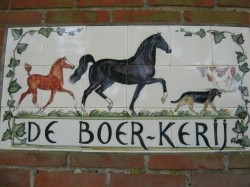 Vergrote afbeelding van Appartement De Boerkerij in Hollum (Ameland)