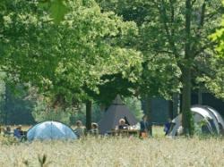 Vergrote afbeelding van Kamperen Natuurkampeerterrein Landgoed de Hoevens in Alphen NB