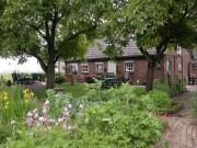 Voorbeeld afbeelding van Bed and Breakfast Bed and Breakfast 't Hofke in Olburgen