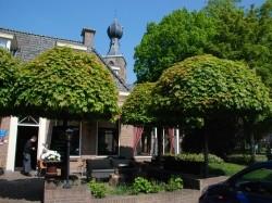 Vergrote afbeelding van Hotel De Brink  in Dwingeloo