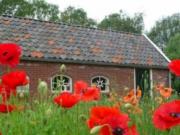 Voorbeeld afbeelding van Bungalow, vakantiehuis 't Kruudhuuske in Aalten