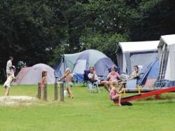 Vergrote afbeelding van Kamperen RCN Vakantiepark de Flaasbloem in Chaam
