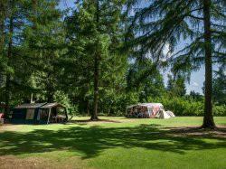 Vergrote afbeelding van Kamperen RCN Vakantiepark de Roggeberg in Appelscha