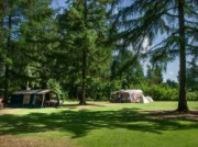 Voorbeeld afbeelding van Kamperen RCN Vakantiepark de Roggeberg in Appelscha