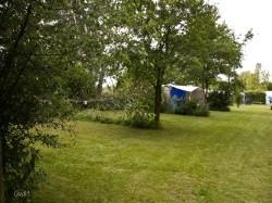Vergrote afbeelding van Kamperen De Boscamp in Nieuwolda