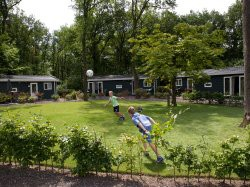 Tweede extra afbeelding van Bungalow, vakantiehuis Vakantiepark Bonte Vlucht in Doorn