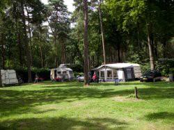Derde extra afbeelding van Bungalow, vakantiehuis Vakantiepark Bonte Vlucht in Doorn