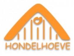 Vergrote afbeelding van Groepsaccommodatie Hondelhoeve Groepsaccommodaties in Eext
