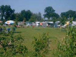 Vergrote afbeelding van Kamperen Camping & Appartementen De Kasteelse Bossen in Horst