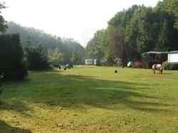 Vergrote afbeelding van Kamperen Camping Trimunt in Marum