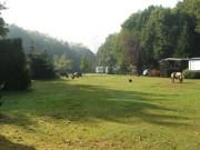 Voorbeeld afbeelding van Kamperen Camping Trimunt in Marum