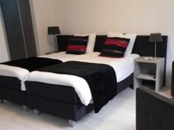 Vergrote afbeelding van Bed and Breakfast B&B OpdeParkkamp in Havelte