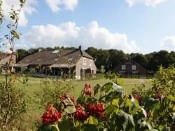 Vergrote afbeelding van Bungalow, vakantiehuis Bosrijk De Kuluut in Overloon