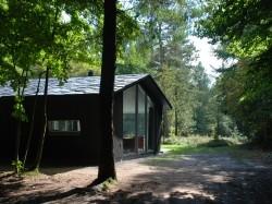 Vergrote afbeelding van Bungalow, vakantiehuis De Boshut in Vierhouten