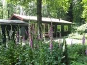 Voorbeeld afbeelding van Bungalow, vakantiehuis De Boomklever in Nutter