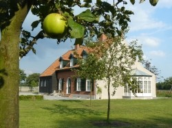Vergrote afbeelding van Bed and Breakfast B&B Boomken's Ranch in Rijsbergen