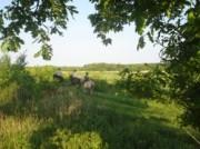 Voorbeeld afbeelding van Bed and Breakfast Gezond Boeren Verstand in Dalerveen