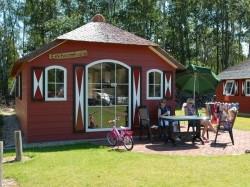 Vergrote afbeelding van Bungalow, vakantiehuis Veluwecamping De Pampel in Hoenderloo