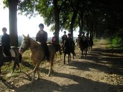 Vergrote afbeelding van Ponykamp, ruiterkamp Manege op de Berg in Echt