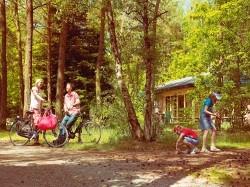 Vergrote afbeelding van Bungalow, vakantiehuis Landal Heideheuvel in Beekbergen