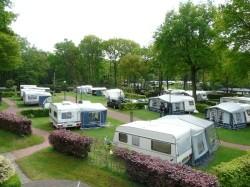 Vergrote afbeelding van Kamperen Minicamping De Bosrand in Lieren