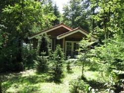 Vergrote afbeelding van Bungalow, vakantiehuis Bungalowpark De Toverberg in Ermelo