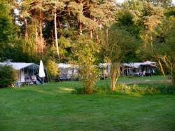 Vergrote afbeelding van Kamperen Landgoed Borkerheide in Westerbork