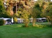 Voorbeeld afbeelding van Kamperen Landgoed Borkerheide in Westerbork