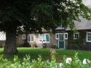 Voorbeeld afbeelding van Bungalow, vakantiehuis Gastenverblijf De Boschkamp in De Lutte