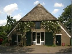 Vergrote afbeelding van Bungalow, vakantiehuis Casita Luna in Mantinge