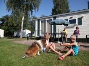 Voorbeeld afbeelding van Stacaravan, chalet Resort Arcen (chalets) in Arcen
