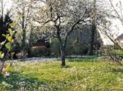 Voorbeeld afbeelding van Bungalow, vakantiehuis Het Vosje in Odoornerveen